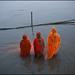 Three women. Sonepur Mela, India