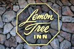 Lemon Tree Inn Santa Barbara Bed Bugs