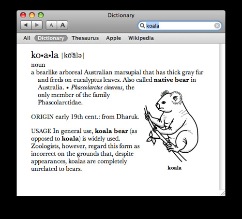 Definition of pedantic searched os x dictionary for koala flickr definition of pedantic by tjs old flickr account mozeypictures