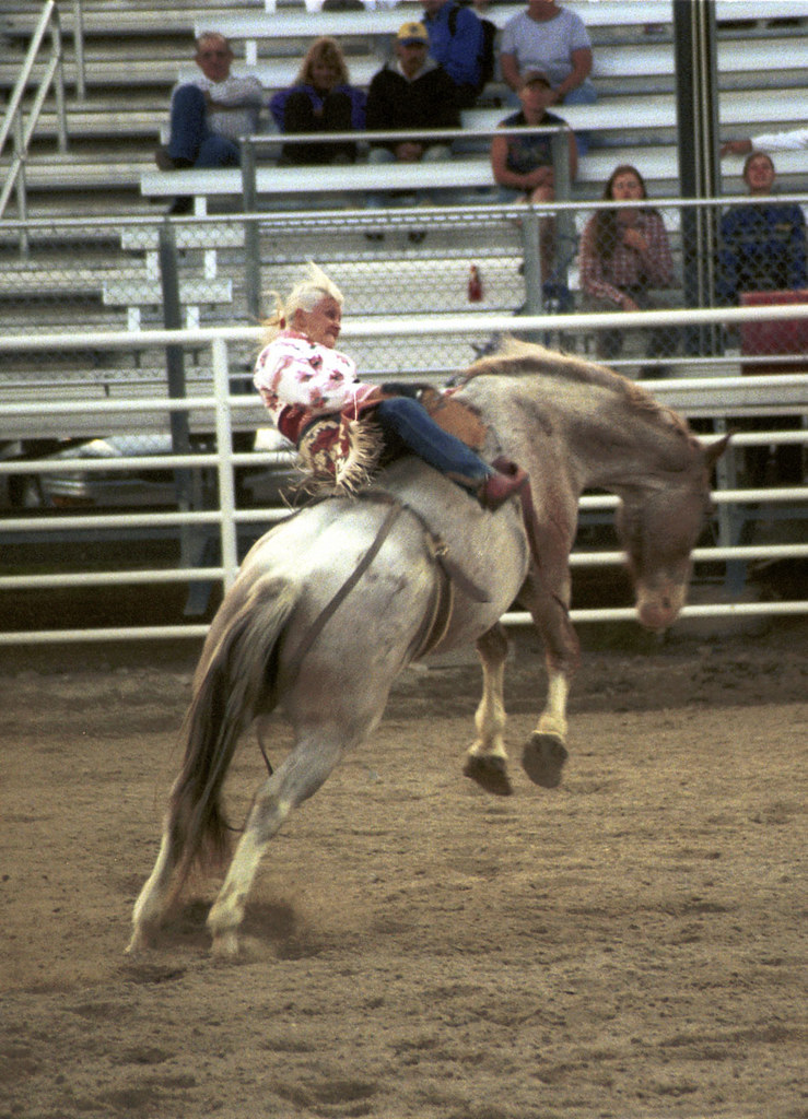 All Girl Rodeo Rider About To Hit The Deck Wyoming Usa