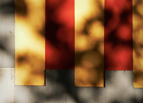2 and ½ yellow shadowed stripes | by julioc.