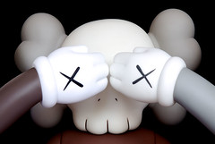 Kaws 5 Years Later Companion | by hello-d