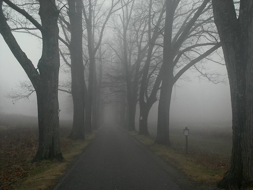 Ghostly Lane | by Stanley Zimny (Thank You for 27 Million views)