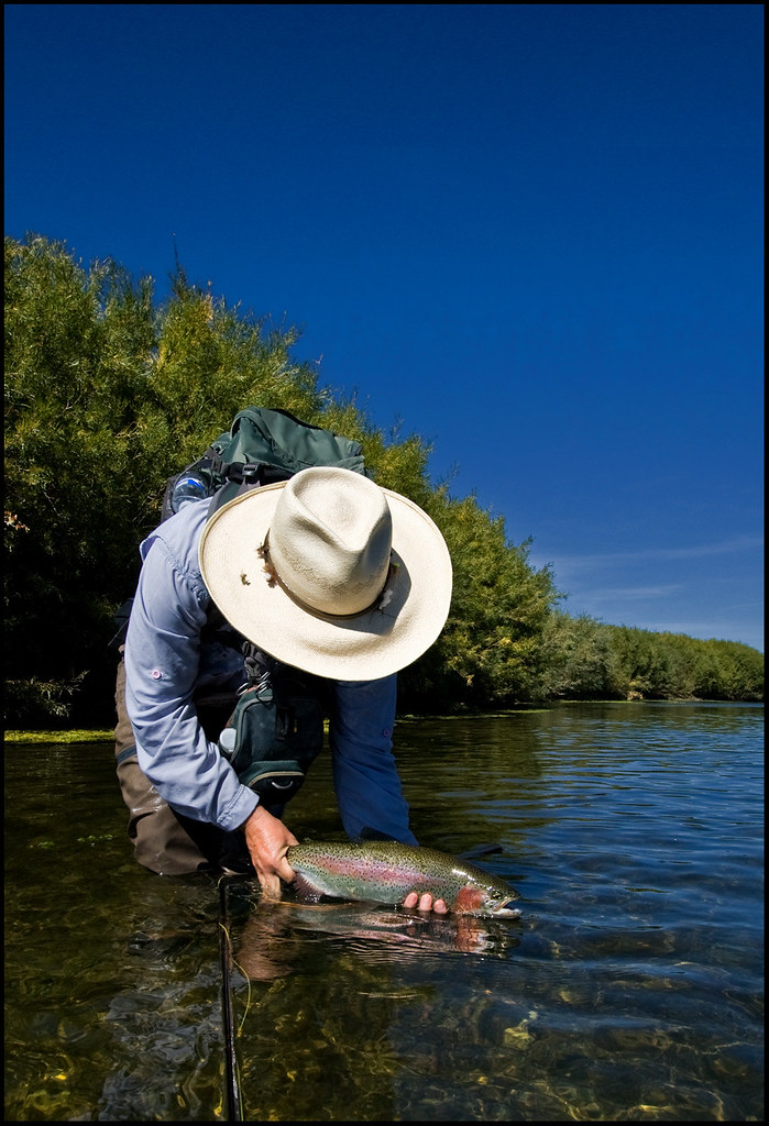 Montana fly fishing beaverhead river solid 39 bow on the for Beaverhead fishing report