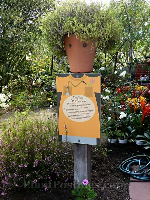 childrens garden 2