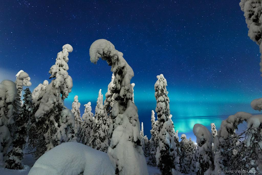 Wintermagic2