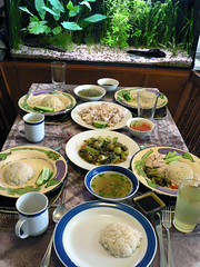 Hainanese Chicken Rice Lunch | by :Salihan
