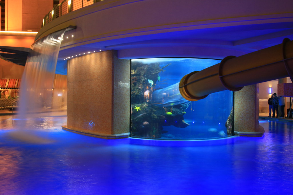 Swimming Pool Aquarium At The Golden Nugget In Las Vegas Flickr