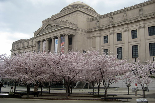 NYC - Brooklyn Museum | by wallyg