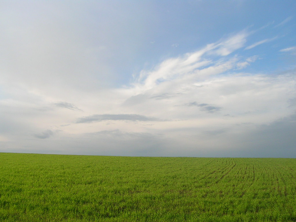 Ukraine landscape field sky clouds grass sun ukraine kiev for Landscape grasses for sun