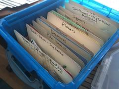 seed sorting IMG_0124