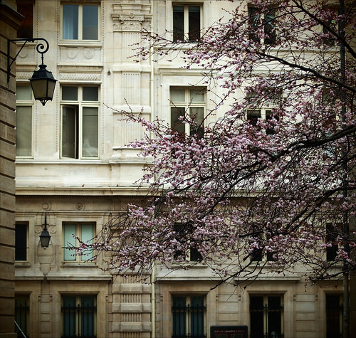 Le printemps  à Paris | by Paolo Pizzimenti