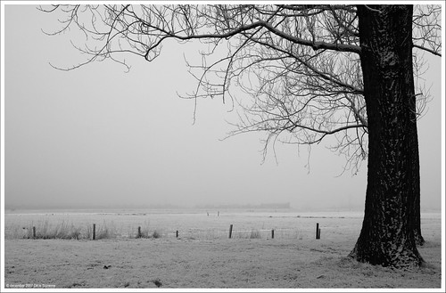 In a colorless world | In een kleurloze wereld | by Dit is Suzanne