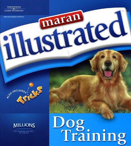 Advanced Dog Training Youtube