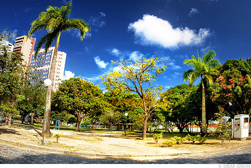 Recife - Parque da Jaqueira | by Omar Junior