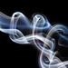 Smoke Braids 4
