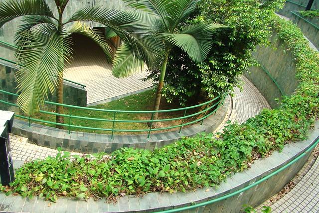 ... World Map App Garden Camera Finder The Weekly Flickr FlickrBlog: flickr.com/photos/wongjunhao/2291253646