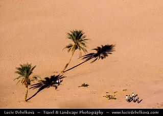Yemen - Shibam - Unesco World Heritage Site - Late Afternoon with Long Shadows | by © Lucie Debelkova / www.luciedebelkova.com