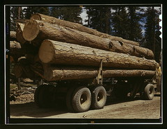Truck load of ponderosa pine, Edward Hines Lumber Co. operations in Malheur National Forest, Grant County, Oregon  (LOC) | by The Library of Congress