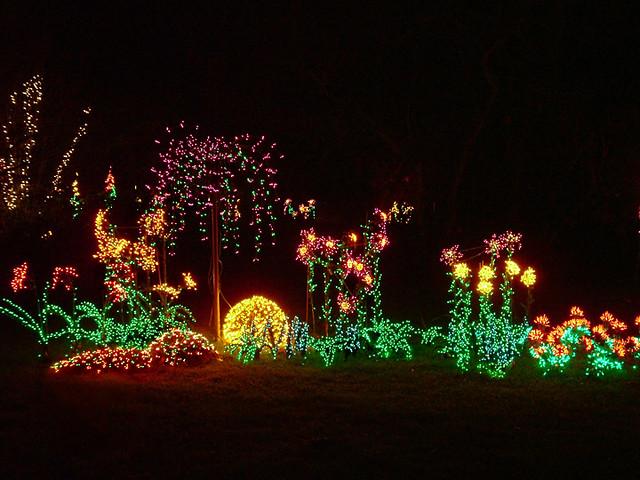 Garden D 39 Lights 8 Garden D 39 Lights Display At The