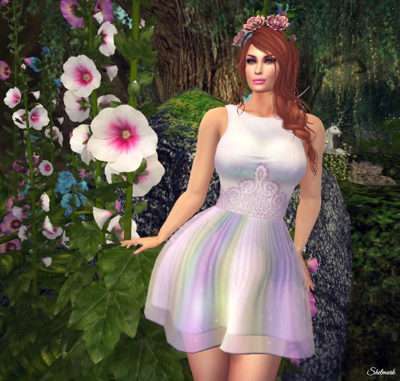 Blog_Enchanted_PetitMort_CinderellaDress_001
