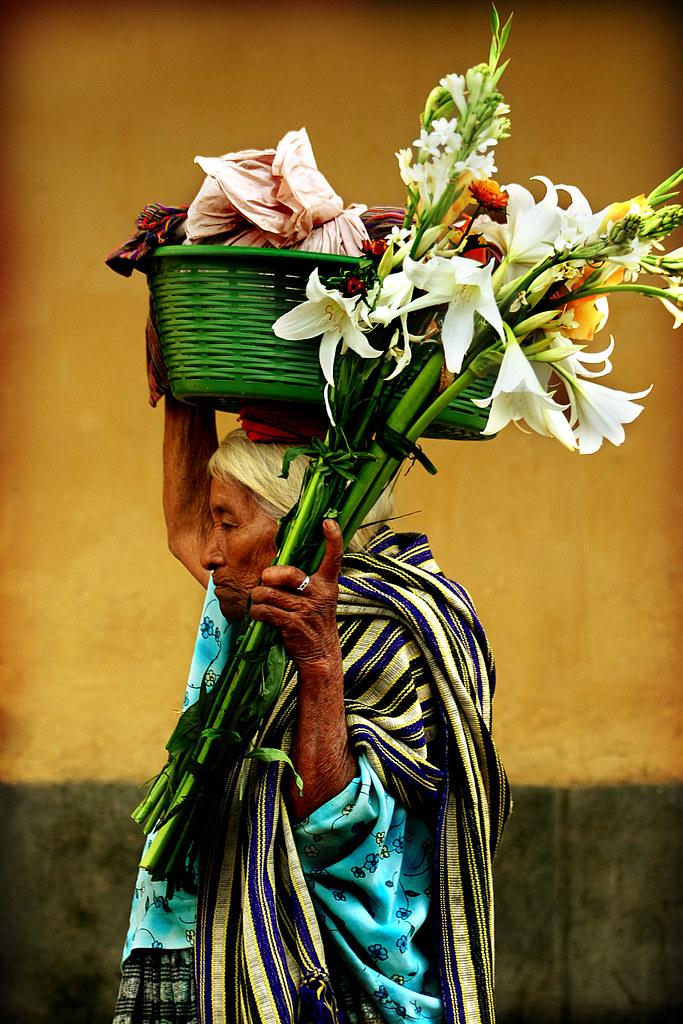 La Vendedora De Flores Ivan Castro Flickr