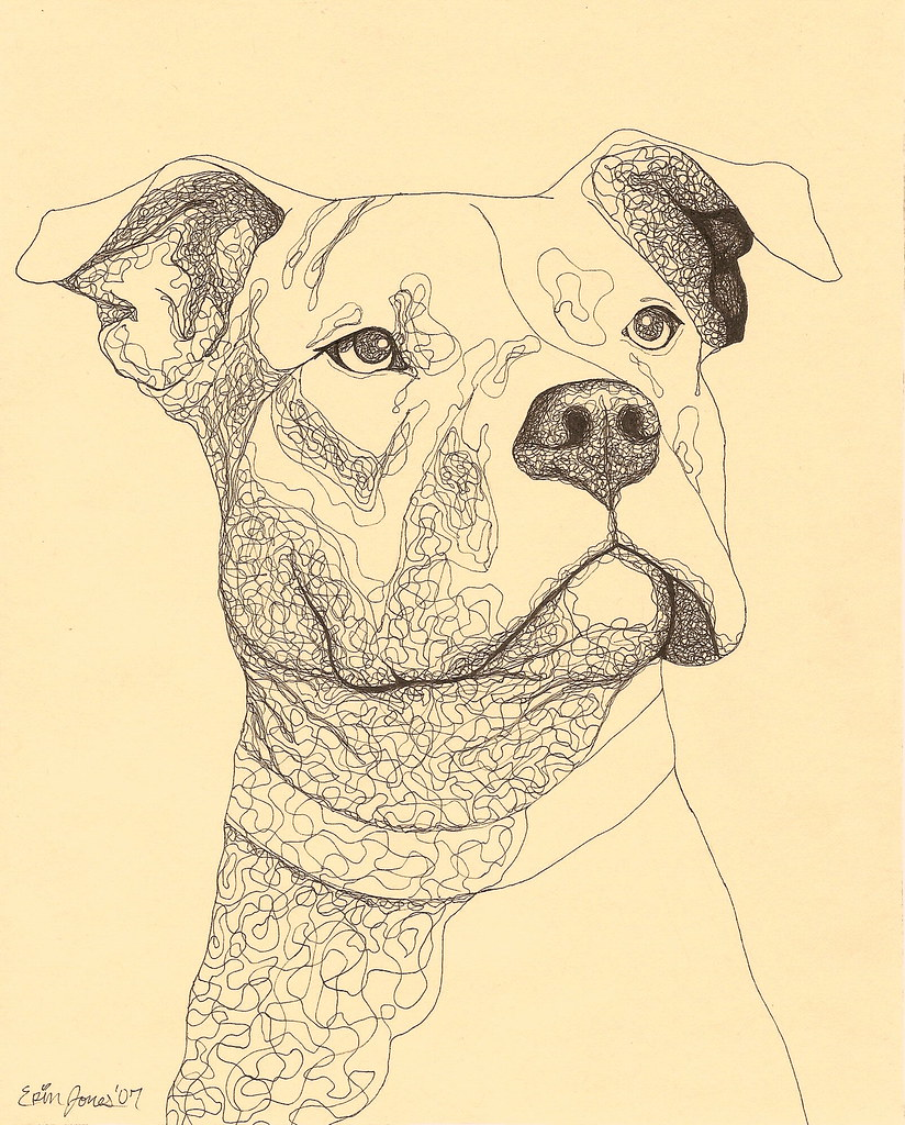 Uncategorized Drawing Pitbull pit bull ink drawing erinkejo flickr