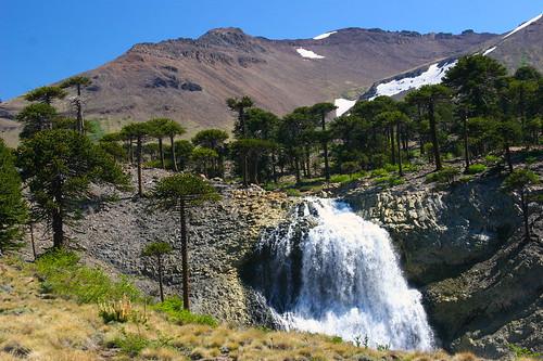 Patagonia Argentina Agrio River Falls Caviahue Flickr