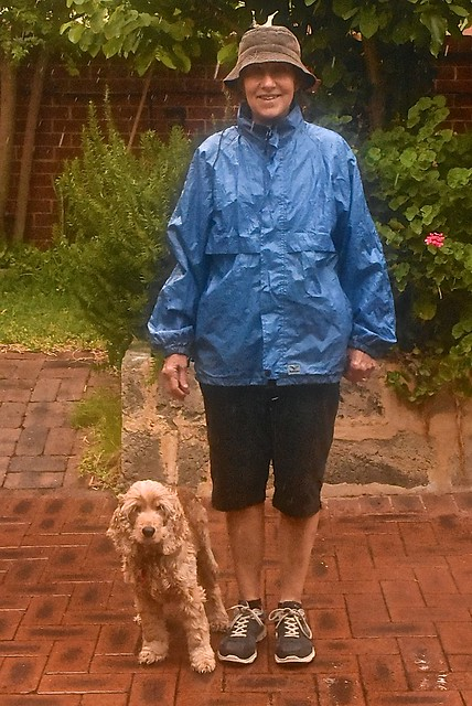 Jill took Millie for a mid-summer walk in the rain this morming.