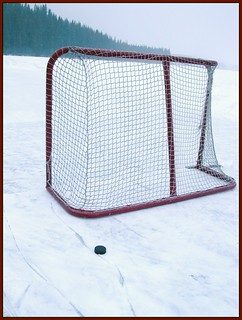 hockey net | by tiffa130