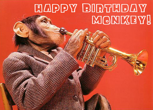 Birthday Monkey SVG cut file birthday svg files birthday svg ...