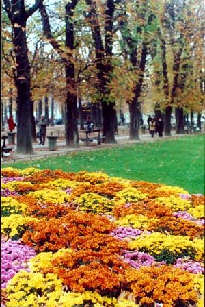 Jard nes de luxemburgo paris francia jard nes de for Jardines de luxemburgo paris