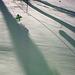 Snowbound pinwheel