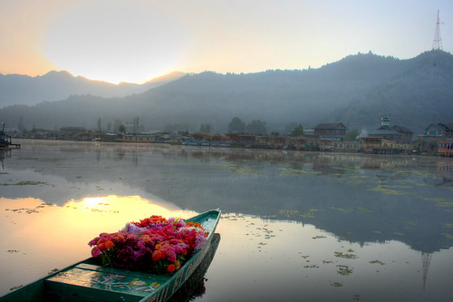 ... Kashmir | Its spine chillin cold here. | Tony Gladvin George | Flickr
