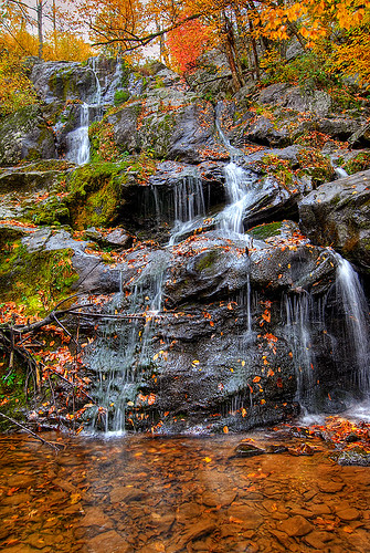 Dark Hollow Falls - Shenandoah National Park | by Dwood Photography