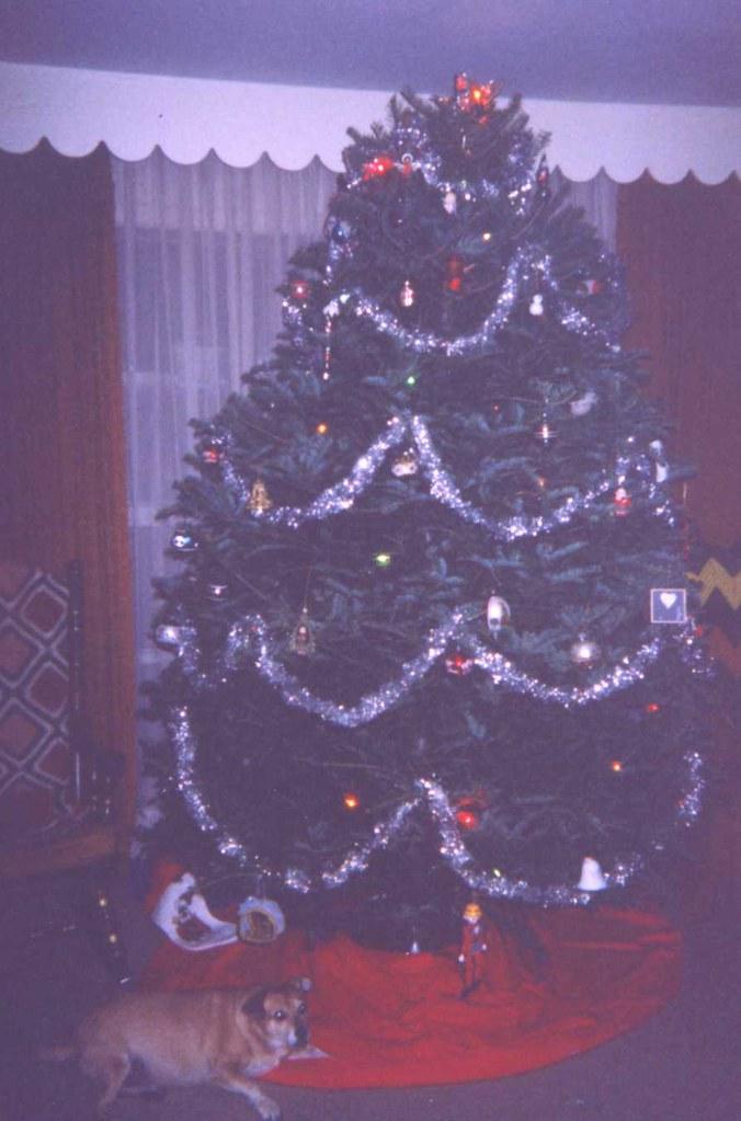 10 Barney & Christmas Tree (December 1997) | Kevin Borland | Flickr
