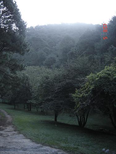 el manzano  dentro del parque nacional de cumbres en villa u2026