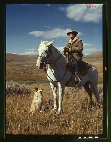 Shepherd with his horse and dog on Gravelly Range, Madison County, Montana  (LOC) | by The Library of Congress