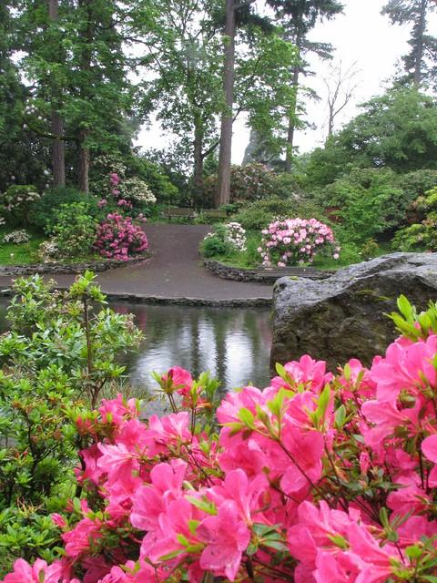 Crystal Springs Rhododendron Garden Portland Oregon Flickr