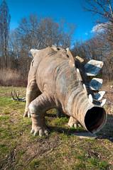 Spreepark: Headless Stegosaurus