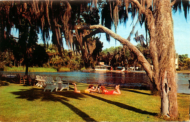 homosassa girls Experience the sun in full at the top nude beaches in florida these clothing optional beaches have it all: cool water, warm sand and a relaxed atmosphere.