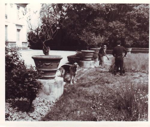 Villa Des Vergers Rimini Villa Des Vergers 1964