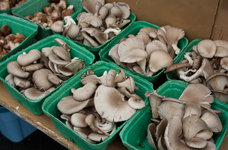 Opening Day of Trout Lake Farmers Market - mushrooms | by Rachael Ashe