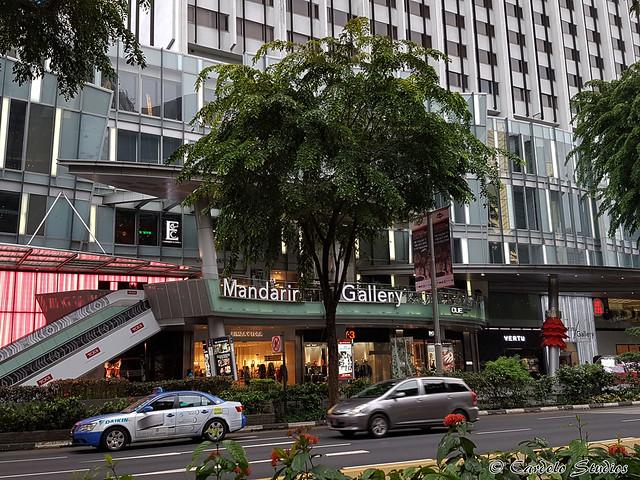 Mandarin Gallery 01