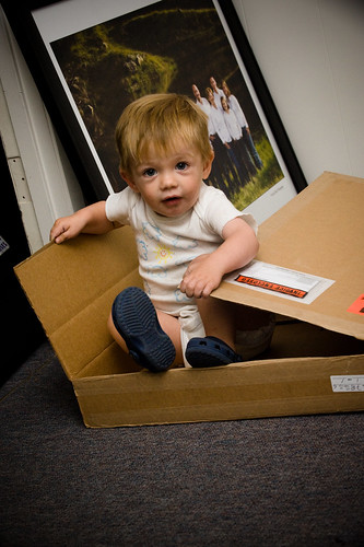 Toddler in a box | by shinnphoto