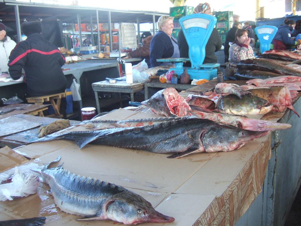 Fish At Privoz Market Odessa Andreas Schepers Flickr