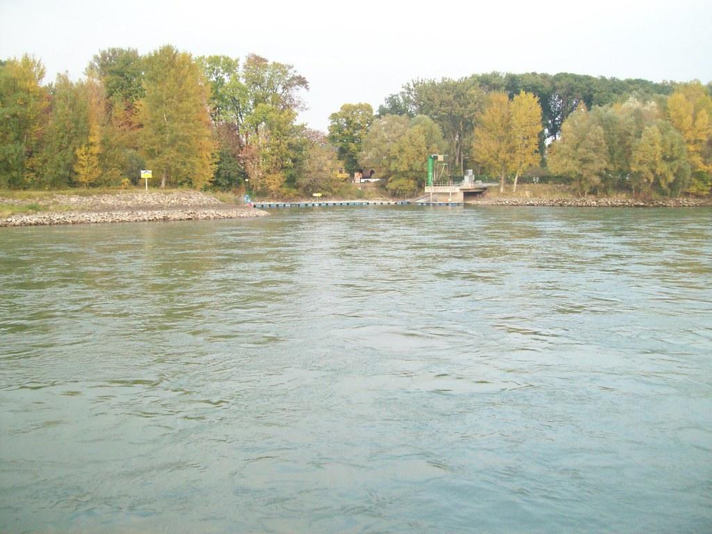100 0638 danube river the danube in german donau from for 76 2306 3