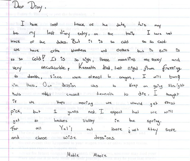 Write a diary entry