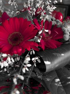 bouquet je vous envoie un bouquet que ma main vient de tri flickr. Black Bedroom Furniture Sets. Home Design Ideas