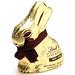 Lindt Dark Chocolate Hollow Bunny